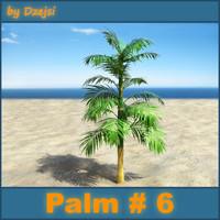 Palm # 6
