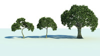 3dsmax 3 trees