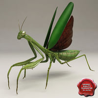 maya mantis modelled