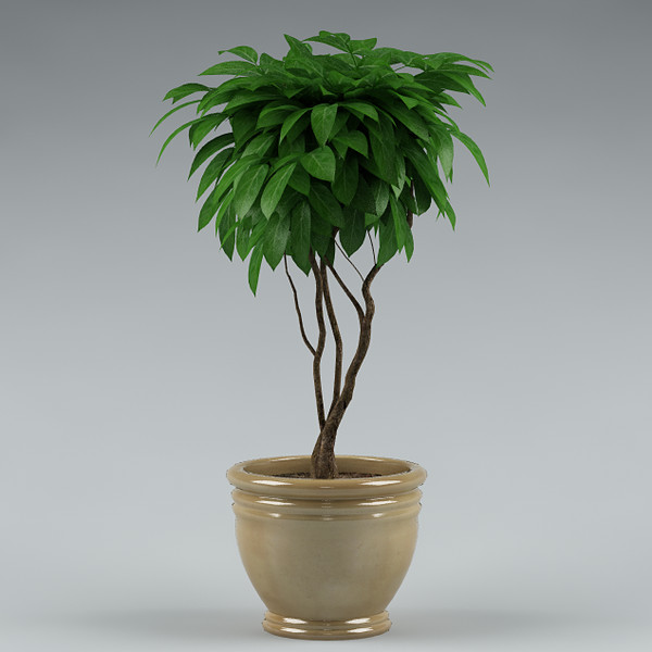 3ds max plant - plant_45... by ArtStudio3d