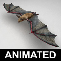 Bat animated