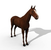 realistic horse animation 3d model