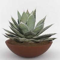 3d model of plant pot