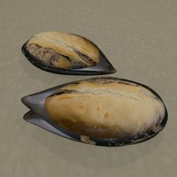 stuffed mussels 3d model