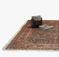 Oriental Rug with Fringe