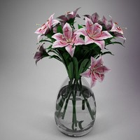 Flower - Lily Pink