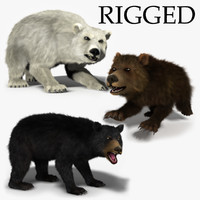 rigged bears - 3 3d model