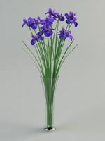 iris vase 3d max