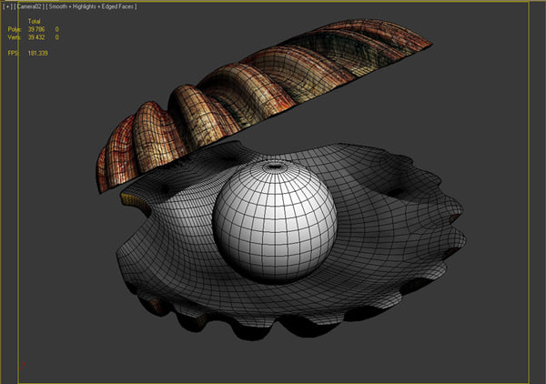 3d shell model - sea shell... by gryaznoff