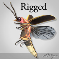 FireFly Bug Rigged with Bones