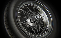 spoked wheel rim tire 3ds