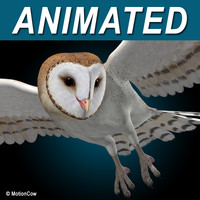 realistic flying barn owl 3d c4d