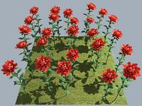 flower rose red 3d max