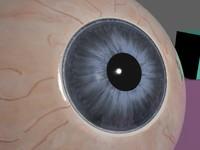 3d realistic human eye pupil