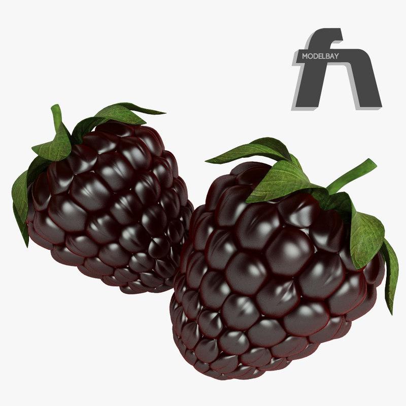 blackberry_3d_model_vray_fruit_1.jpg