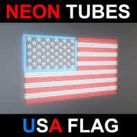 flag neon lights 3d model