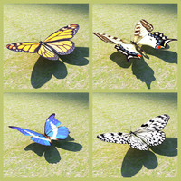 Set of 4 3D butterflies