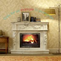 Fireplace 08
