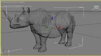rhino safari 3d max