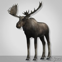 moose modeled horn 3ds