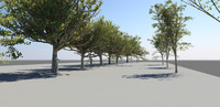 High Poly Dense Tree Pack (12)