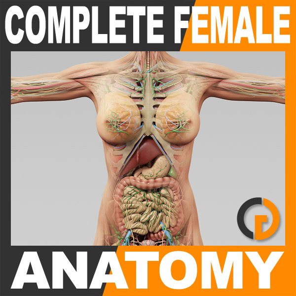 CompleteFemale_th001.jpg