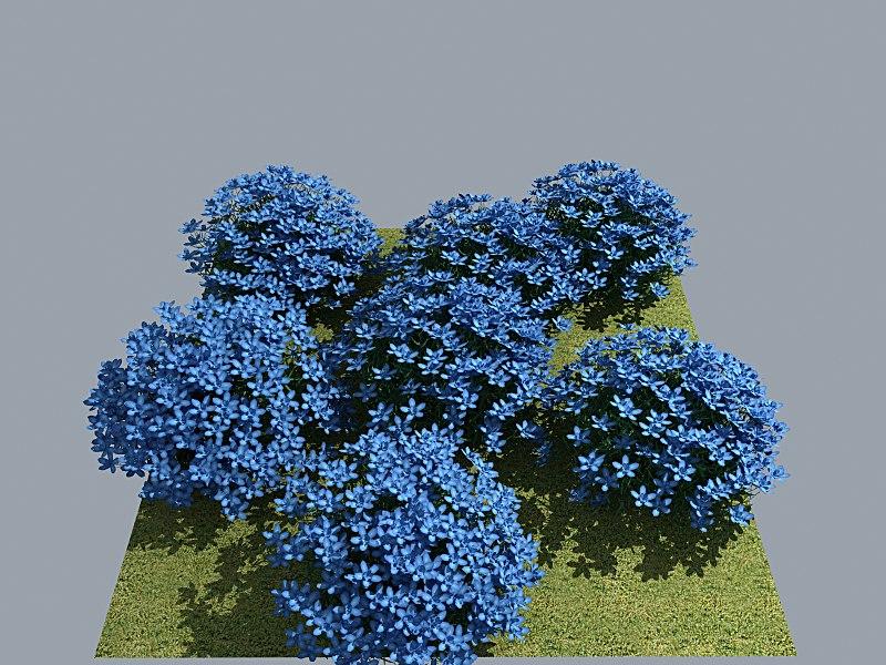 Flower_Myosotis_Heavy_MAX8_Vray1_5RC3.png