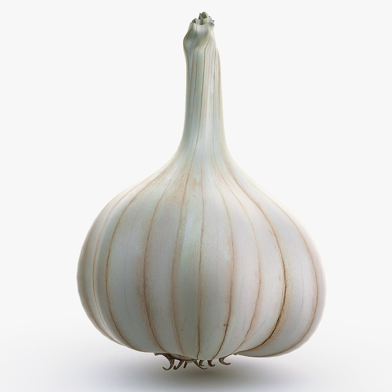 Garlic_01.jpg
