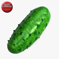 max cucumber vegetable