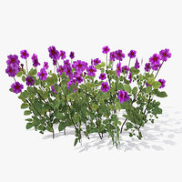 3d cowslip flower bush model