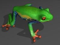 tree frog 3d obj
