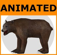 3ds max rigged bear animations