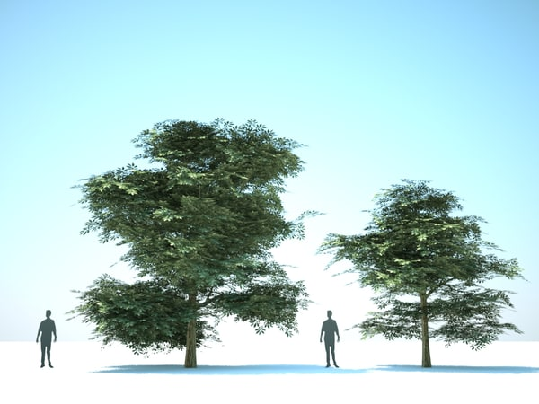 3d model trees 10 - 10 Deciduous trees... by be fast