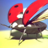 3d ladybug rigged model