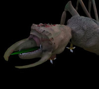 limrut monster 3d c4d