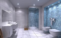 max architectural bathroom