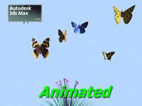 Animated Butterflies Assorted 3ds Max 2008