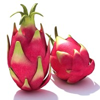 Fruit_08