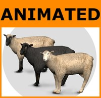 Animated Low Poly Sheep Set