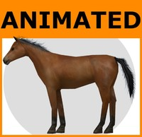3ds max rigged horse animations