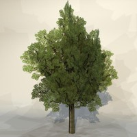 3d pc tree