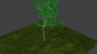 free max model tree blender