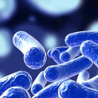 3ds max bacillus