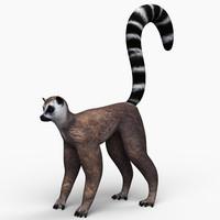 lemur 3ds