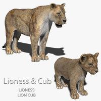 fbx lioness cub fur lion