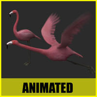 flamingo flying animation 3d model