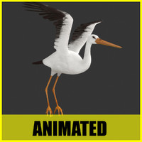 Stork - Animated