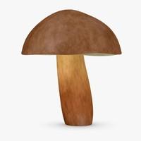 maya mushroom boletus badius
