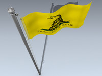 Flag (Dont Tread)
