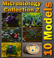 Microbiology Package 2 Fungi